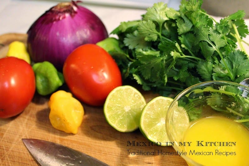 Xnipec Salsa | Ingredients