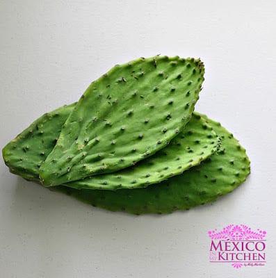 Nopales mexican cactus recipe